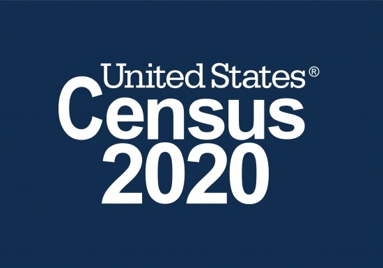 2020 Census general image